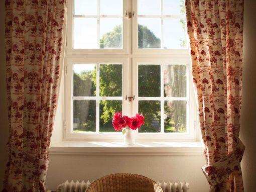 Fönster ros